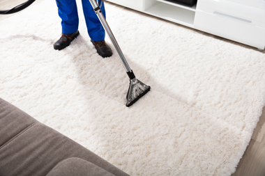 Services - Greenbay Carpet Cleaning Pros
