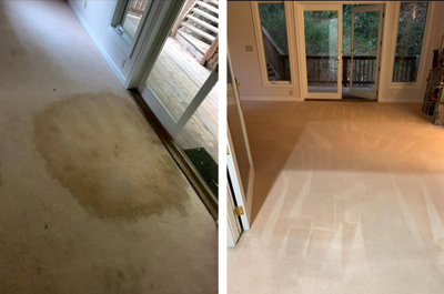Green Carpet Cleaning San Mateo, CA
